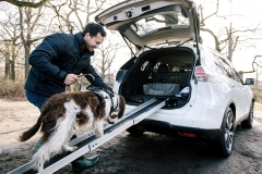 Nissan Rogue & X-Trail 4Dogs